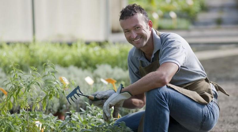 kosten tuinaanleg en hovenier inclusief bespaartips