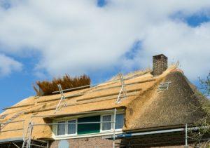 Rieten dak renovatie in uitvoering