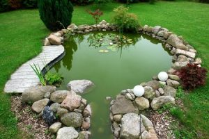 Een vijver in een mooie tuin